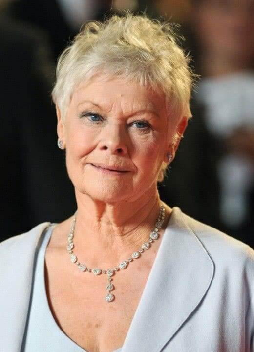 Judi Dench hairstyle